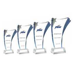 Acrylic Trophy 202