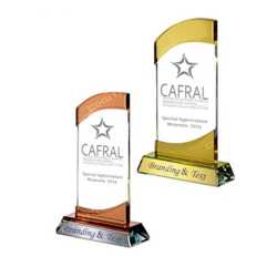 Crystal Trophy 134
