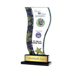Crystal Trophy 169