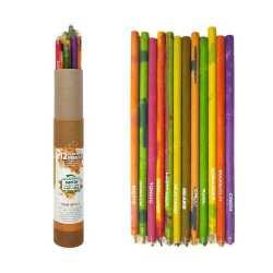 Plantable Pencil Box ( 12pc )