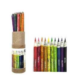 Plantable Mini Coloring Pencil ( 10pc )