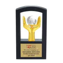 Wooden Metal Trophy 19