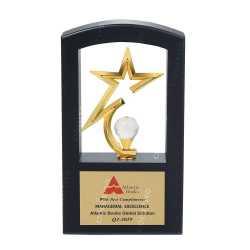 Wooden Metal Trophy 24